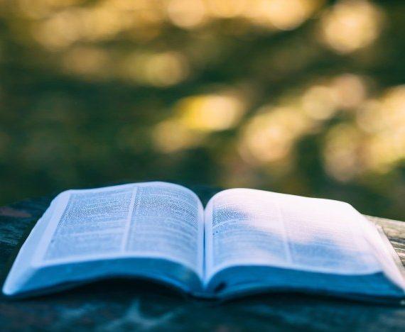 Bourses de traduction littéraire Passa Porta : appel à candidatures