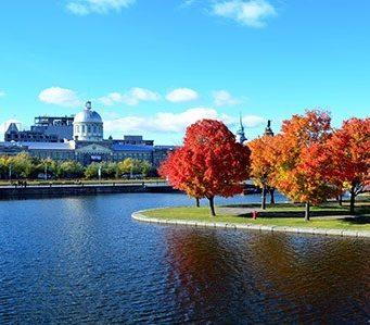 Résidences d'écriture au Québec : appel à candidatures